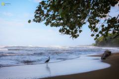 costa-rica-117