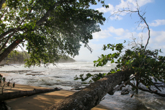 costa-rica-119