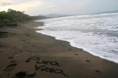 costa-rica-168