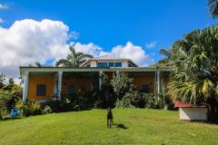 Jamaika-44