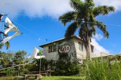 Jamaika-69