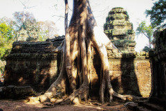 kambodscha-8205
