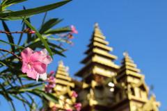 Myanmar-49