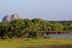 Sri Lanka-116