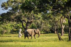 Sri Lanka-118