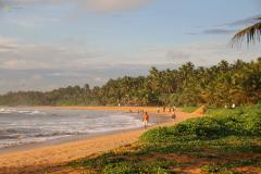 Sri-Lanka-8