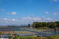 Sri-Lanka-89
